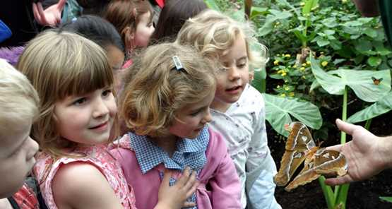 London Zoo Tickets Prices Offers London Zoo Dates Discount - Children's birthday party london zoo