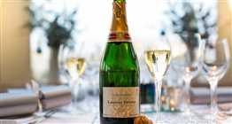 NYE Barracuda Champagne